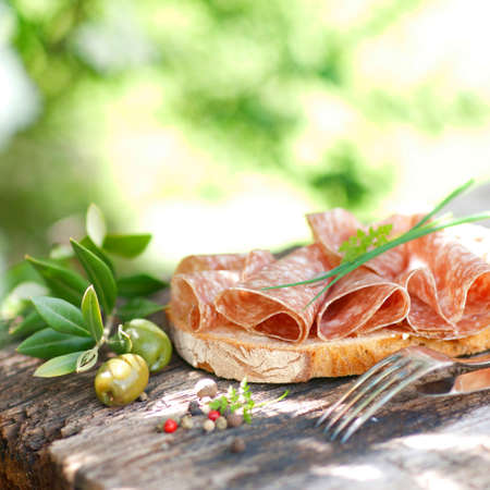 Rustic bread with salami Stock Photo - 13833791