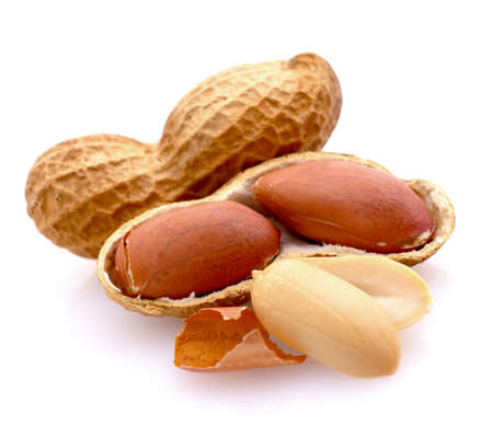 monkey nuts: Peanuts Stock Photo