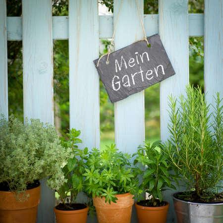 Mein Garten Stock Photo - 13983200