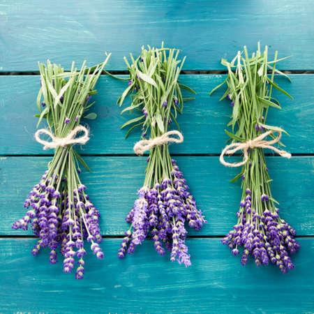 lavender flowers: Fresh lavender