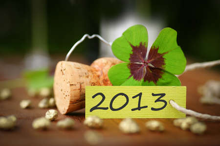 Lucky clover, 2013 Stock Photo - 14349813