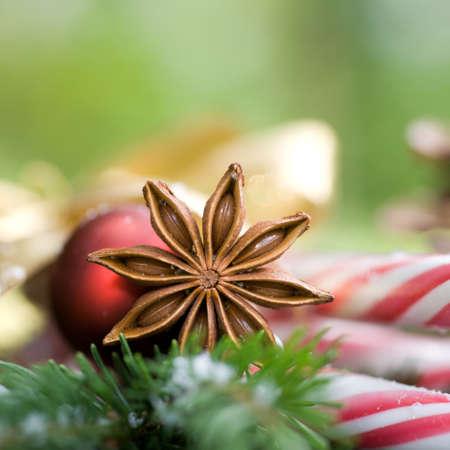 Vánoční koření Reklamní fotografie