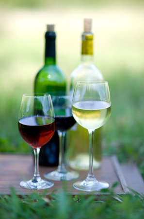tasting wine: Wine tasting