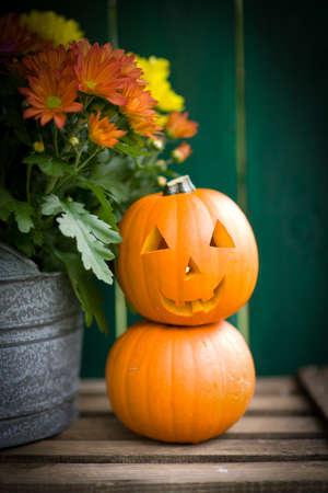 fall harvest: Halloween, pumpkin