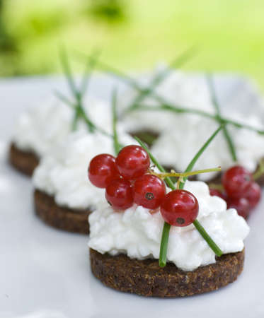 Wholewheat bread whit cottage cheese photo
