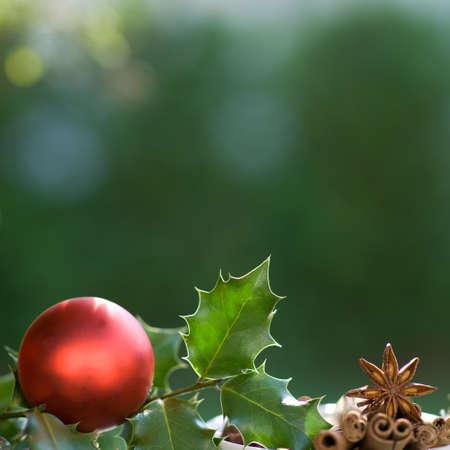 épices: Fond de Noël