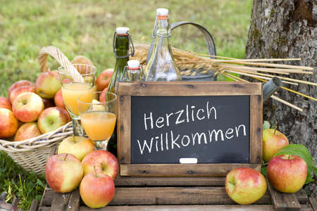 willkommen: Slate  Herzlich willkommen  german