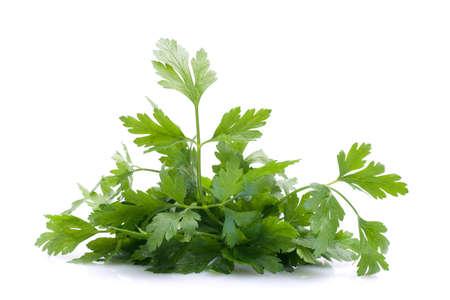 green herbs: Fresh parsley on white ground