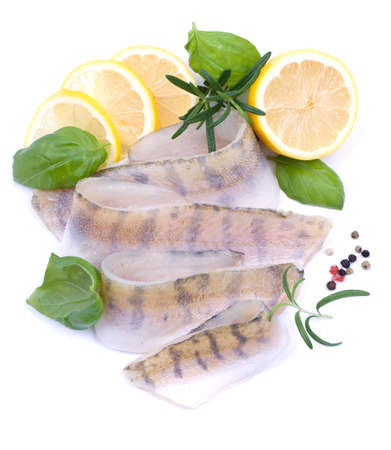 Fresh pikeperch fillet photo