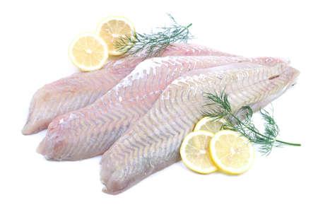 Fresh coalfish on white ground
