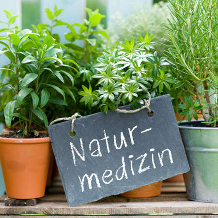 Slate with german text  Botanical medicine Stock Photo - 17018437