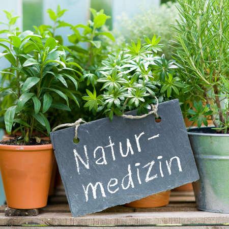 botanical medicine: Slate with german text  Botanical medicine