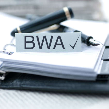 feasibility: BWA  german  - Business assessment