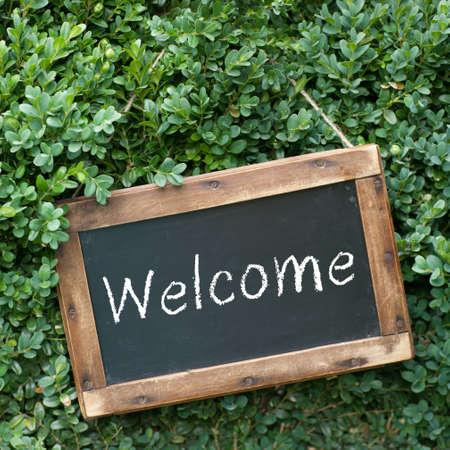 bienvenidos: Pizarra, Bienvenidos