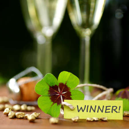 Lucky clover, winner  photo