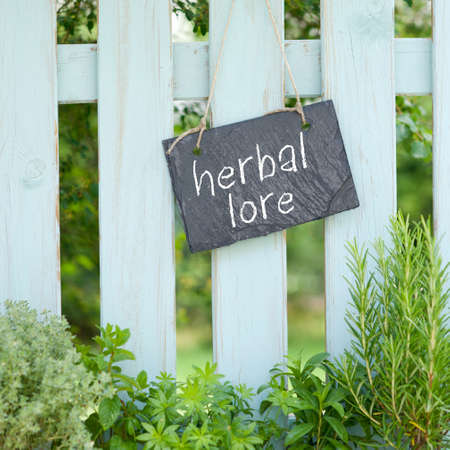 Slate with text  Herbal lore Stock Photo - 17476100