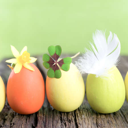 Easter background Stock Photo - 17906315
