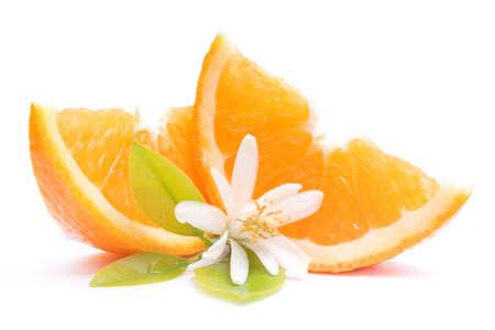 Fresh oranges Banque d'images