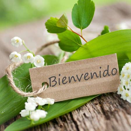 bienvenido: Bienvenido Stock Photo