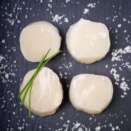 scallop: Fresh scallop on a slate