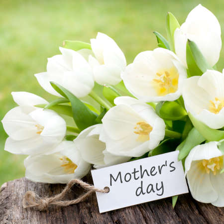mother day: Mother s day