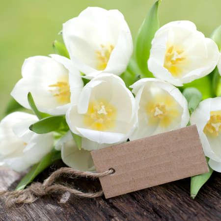 Label, tulips photo