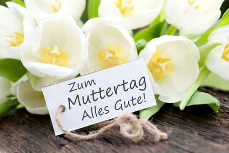 tulips field: Label with german text  Mother s day
