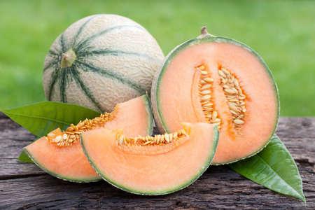 melon fruit: Fresh melons
