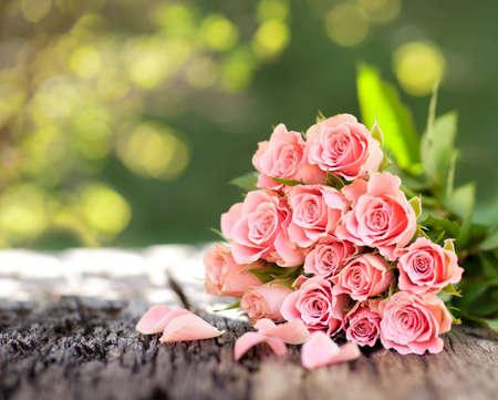 Roses Zdjęcie Seryjne