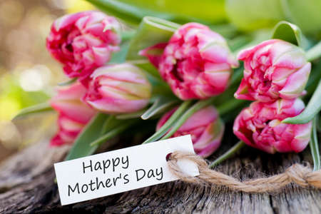 Happy Mother`s Day Zdjęcie Seryjne