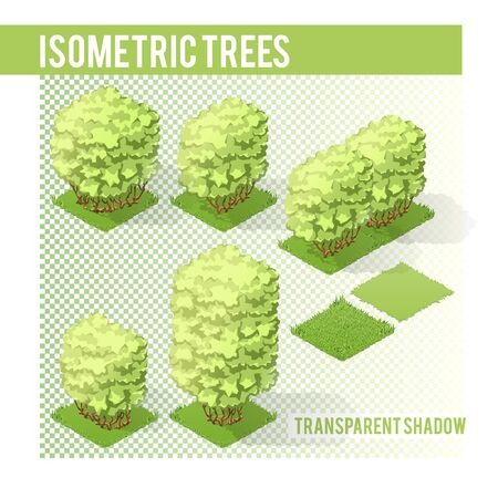 sample environment: Isometric Tree  with transparent shadow for landscape design Illustration