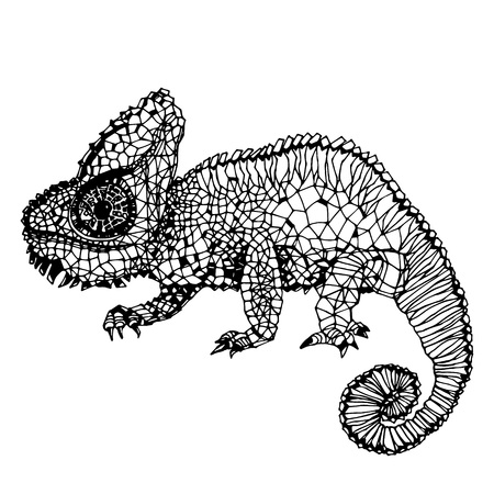 handdrawn: Chameleon. Hand-drawn illustration in doodle style.