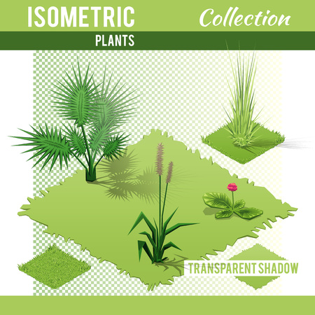Isometric plants and grass  with transparent shadow for landscape design