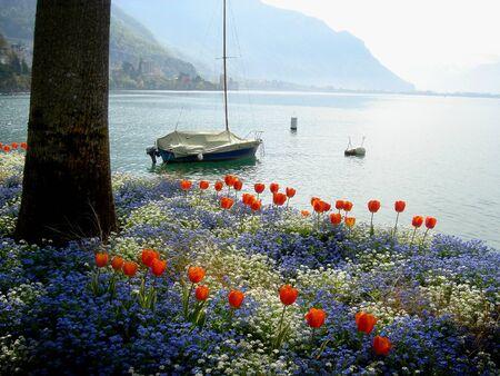 モントルー、スイス連邦共和国の近くの湖畔の遊歩道