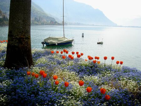 Lakeside trail near Montreux, Switzerland         photo