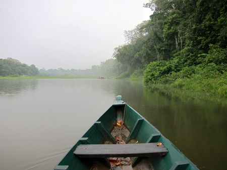 amazon river: Boat cruise in the Amazon rainforest, Peru