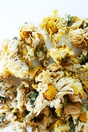 chamomile flower: Dry chamomile flower for tea