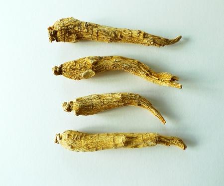 North American ginseng for herbal tea 版權商用圖片