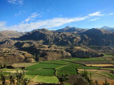 terracing: Farming terraces in the Colca Valley, Peru Stock Photo