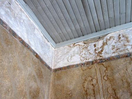 damp: Dettagli Interno di una casa abbandono, Bodie Ghost Town, California Editoriali