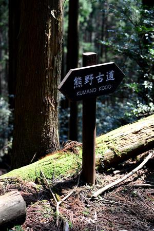 Kumano Kodo signage at the ancient pilgrim route at Kii Mountains, near Tanabe, Kansai, Japan 版權商用圖片