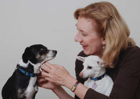 Smiling woman with two dogs Stock Photo - 12760852