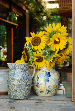Yellow Sunflowers in a vase photo
