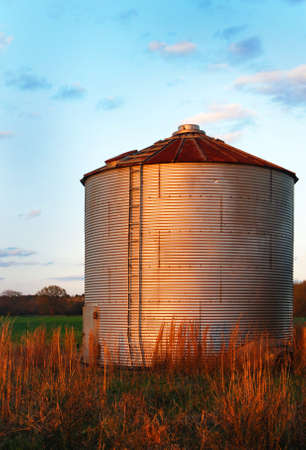 grain silo with corrugated metal.  Against a blue sky and brown grass.