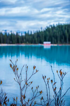 Canada Lake Louise Banco de Imagens