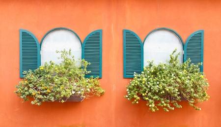 Window and flowerpot photo
