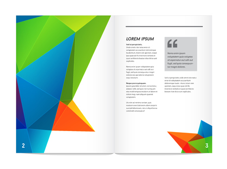 Visual identity with letter elements polygonal style Letterhead and geometric triangular design style brochure cover template mock ups for business with Fictitious name Illustration