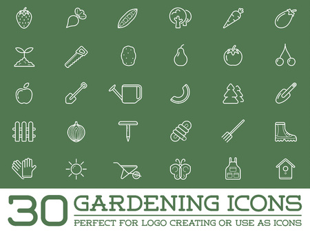potato tree: Set of Vector Garden and Farm Elements and Fruits or Vegetables Icons Illustration can be used as Logo or Icon in premium quality