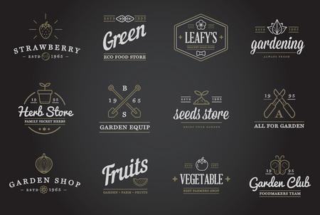 fresa: Conjunto de vectores de Jard�n y elementos Granja y frutas o verduras iconos ilustraci�n se puede utilizar como logotipo o icono de primera calidad Vectores
