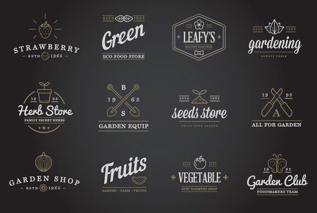 gardening tool: Set of Vector Garden and Farm Elements and Fruits or Vegetables Icons Illustration can be used as Logo or Icon in premium quality